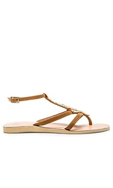 cocobelle Arrow Sandal in Brown