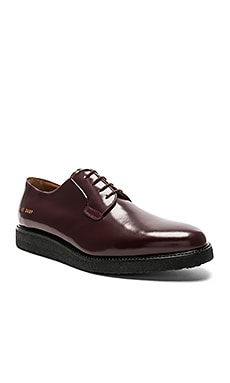 Derby Shine Common Projects $404