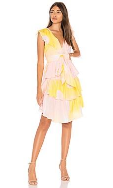 Jetset Pineapple Dress Cynthia Rowley $395