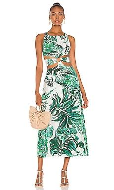 Izabel Dress Cult Gaia $598