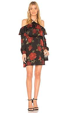 Boden Dress cupcakes and cashmere $29 (FINAL SALE)