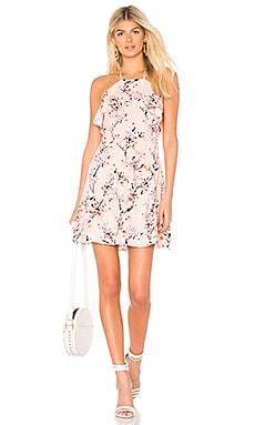 Corralyn Dress