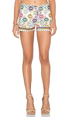 Iva Short in Multicolor Embroidery