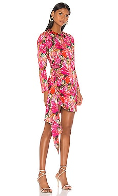 Anik Dress DELFI $398