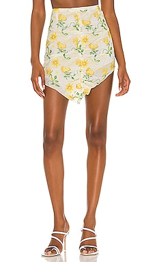 Floral Dreams Embroidered Skirts DANIELLE GUIZIO $160