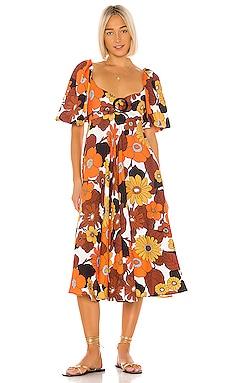Mor Dress Dodo Bar Or $240