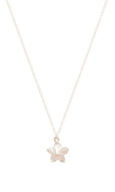 Dogeared Flower Girl Plumeria Necklace in Sterling Silver