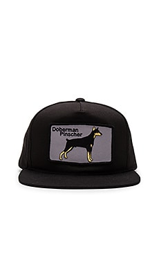 Dog Limited Doberman Snapback in Black
