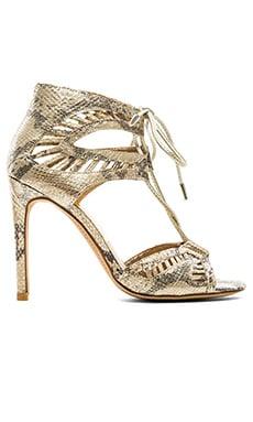 Dolce Vita Henlie Heel in Gold