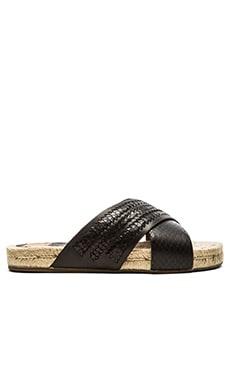 Dolce Vita Geinvee Sandal in Black Snake
