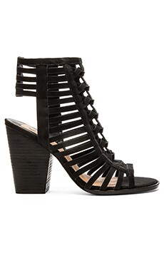 Dolce Vita Percey Heel in Black
