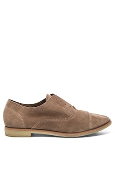 Dolce Vita Cooper Oxford in Dark Taupe