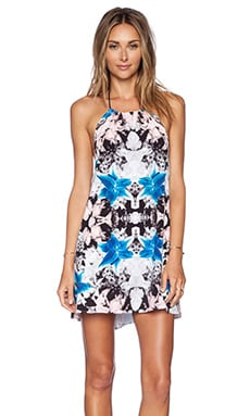 Donna Mizani Iris Halter Mini Dress in Iris