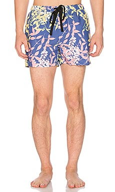 Night Swim Short