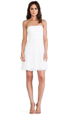 Diane von Furstenberg Amira Lace Dress in White