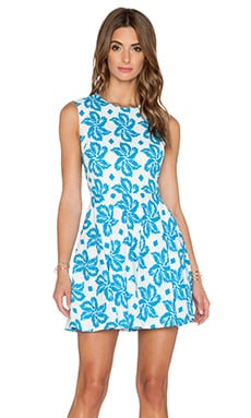 Diane von Furstenberg Jeannie Dress in Giant Leaf Floral Blue