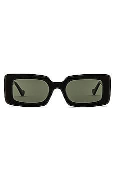 Havana Sunglasses DEVON WINDSOR $99 BEST SELLER