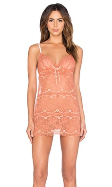 eberjey Vienna Lace Chemise in Burnt Sienna