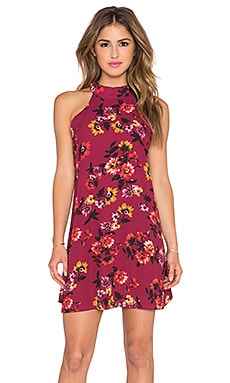 Eight Sixty Bordeaux Dress in Burgundy