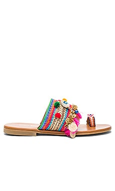 Jaipur Sandal in Multi