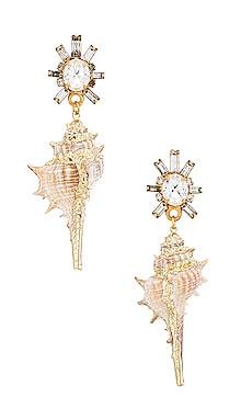 Holland Earrings Elizabeth Cole $133 BEST SELLER