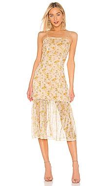Wattle Detachable Skirt Dress ELLIATT $49
