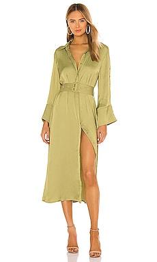 Aviary Shirt Dress ELLIATT $219