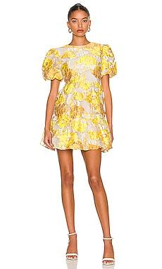 Progressive Dress ELLIATT $210 NEW