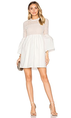 Flare Sleeve Lace Mini Dress