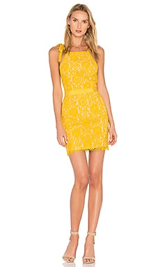 Tied Strap Lace Mini Dress in Honey Yellow