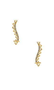 Ettika Ear Crawler in Gold
