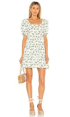 Eldora Mini Dress FAITHFULL THE BRAND $189 NEW