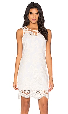 Embroidered Tulle Dress in Off White