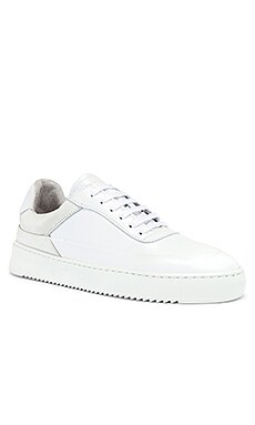 Shift Sneaker Filling Pieces $220