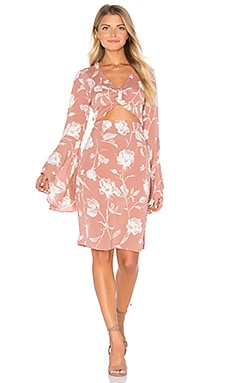 FLYNN SKYE Moscow Dress in Vintage Rose