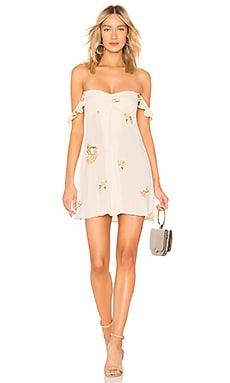 Carla Mini Dress FLYNN SKYE $49 (FINAL SALE)