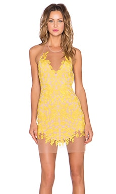 For Love & Lemons Luau Halter Dress in Primrose & Nude