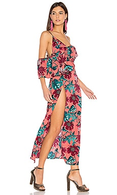 Flamenco Maxi Dress in Pink Flamenco