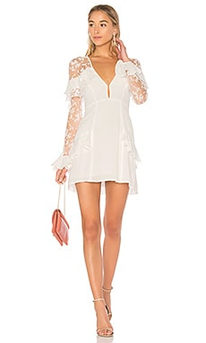 Rosebud Embroidery Mini Dress