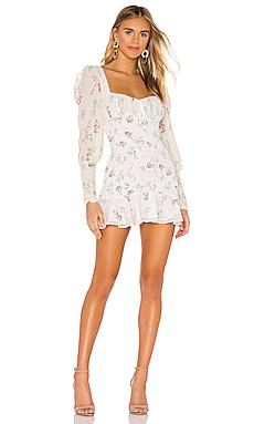 Dixon Mini Dress For Love & Lemons $236