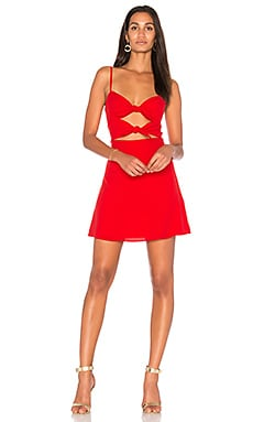 x Revolve Mini Dress FAME AND PARTNERS $129