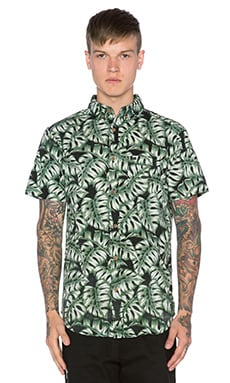 Globe Monstera Shirt in Foliage