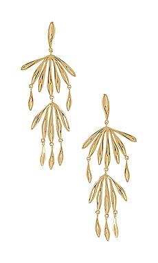 Petal Drop Earring gorjana $47