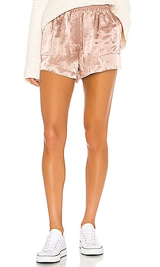 Pin Up Girl Shorts GRLFRND $198 Collections
