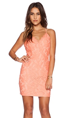 Greylin Stasia Floral Lace Dress in Coral