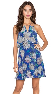 Greylin Lily Pond Keyhole Dress in Navy