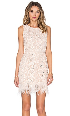 Greylin Miri Feather Dress in Blush