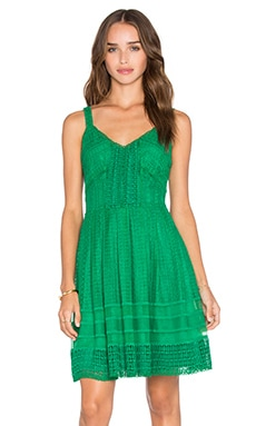 Calissa Lace Dress in Kelly Green