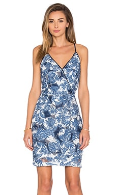 Tuluna Lace Printed Dress in Blue