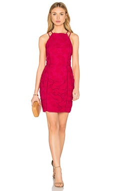 Yasmine Lace Dress in Azalea
